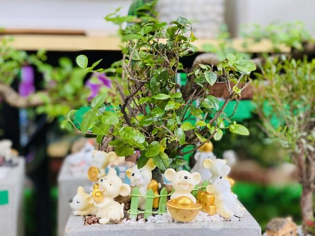 Hàng nghìn loại 'kì hoa dị thảo' đổ bộ chợ hoa xuân Sài Gòn ảnh 30