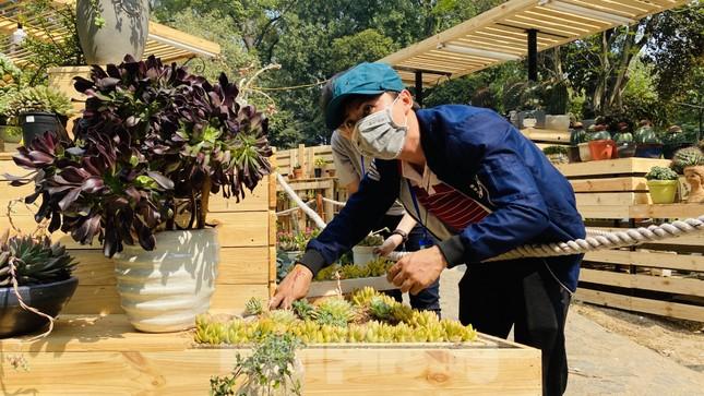 Hàng nghìn loại 'kì hoa dị thảo' đổ bộ chợ hoa xuân Sài Gòn ảnh 6