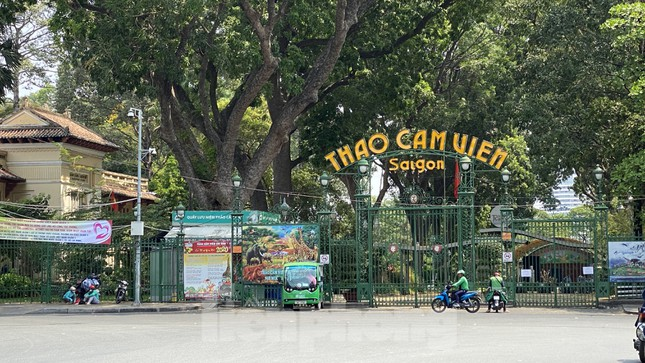 Sài Gòn trước và trong mùa dịch bệnh COVID-19 ảnh 20