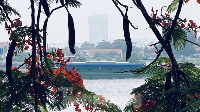 Bầu trời Sài Gòn âm u, chìm trong sương mù ảnh 8