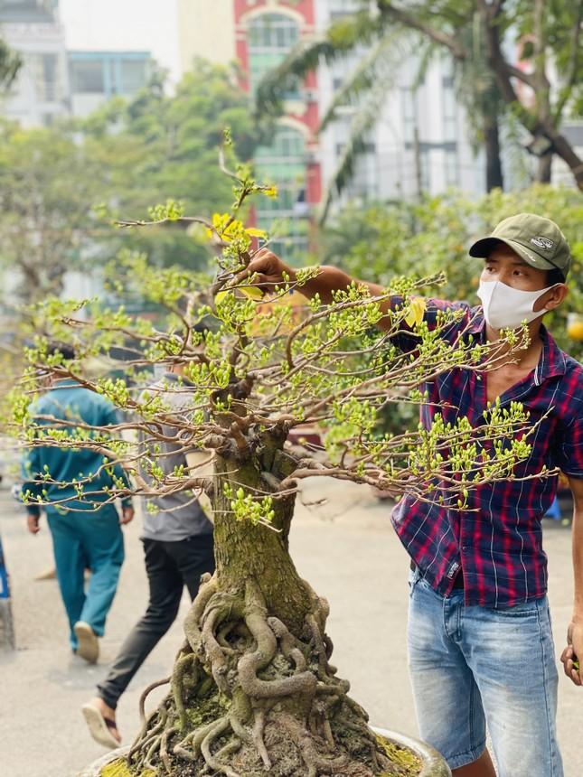 Chợ hoa lớn nhất Sài Gòn vắng khách ngày cận Tết ảnh 8