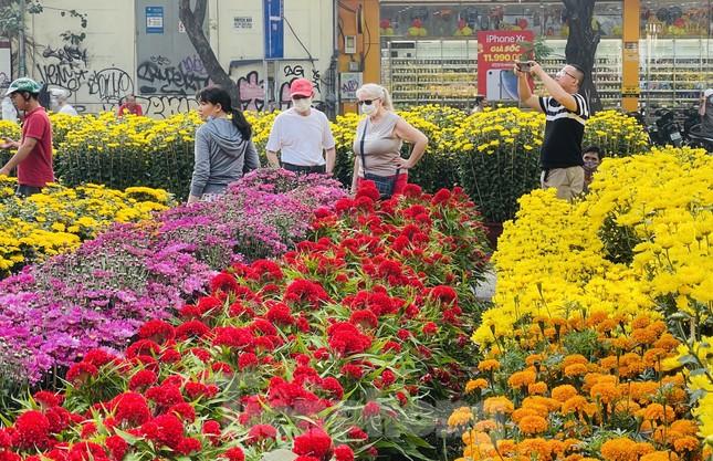 Chợ hoa lớn nhất Sài Gòn vắng khách ngày cận Tết ảnh 2
