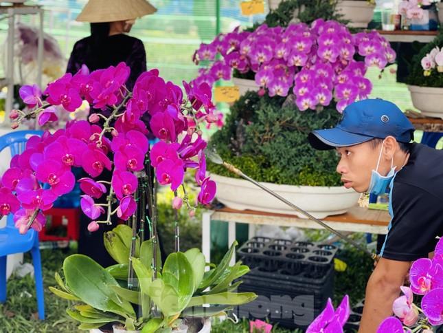 Chợ hoa lớn nhất Sài Gòn vắng khách ngày cận Tết ảnh 7