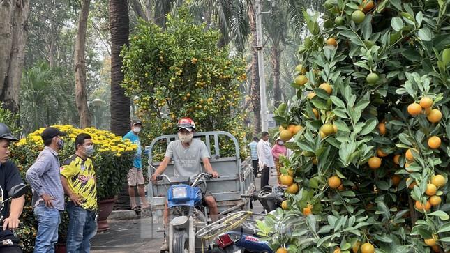 Chợ hoa lớn nhất Sài Gòn vắng khách ngày cận Tết ảnh 13
