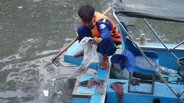 Hai cơn mưa ở TPHCM làm chết gần 14 tấn cá trên kênh ảnh 9