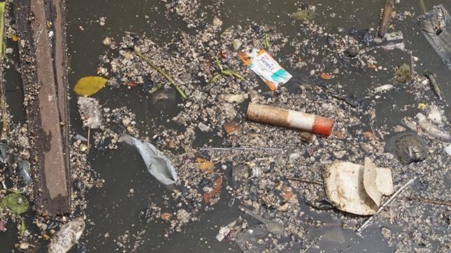 Hai cơn mưa ở TPHCM làm chết gần 14 tấn cá trên kênh ảnh 2