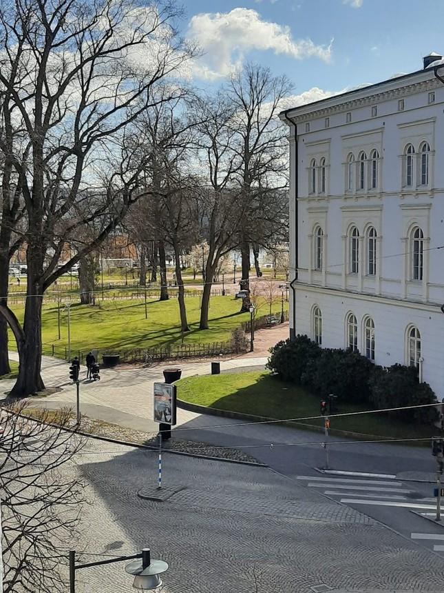 Mình đã sống chung với đại dịch COVID-19 tại Thụy Điển như thế nào? ảnh 2