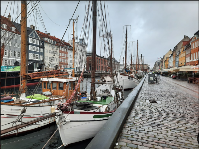 Mình đã sống chung với đại dịch COVID-19 tại Thụy Điển như thế nào? ảnh 6