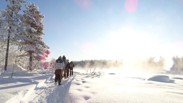Mình đã sống chung với đại dịch COVID-19 tại Thụy Điển như thế nào? ảnh 7