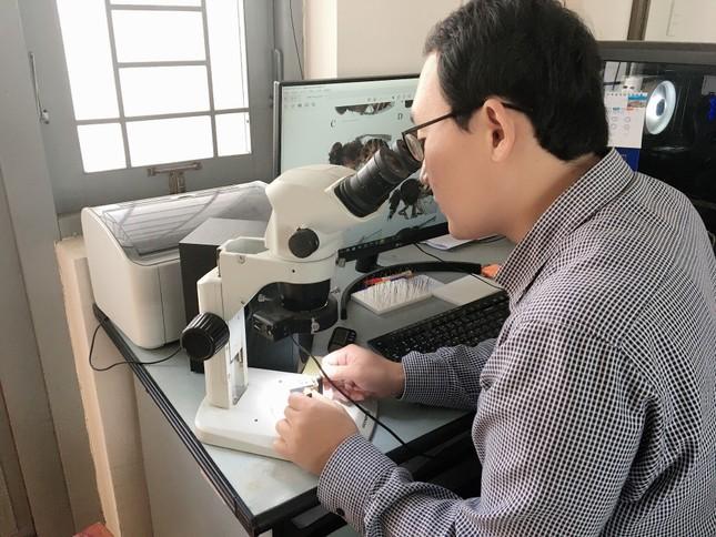 Gặp thầy giáo Hàn Quốc xây dựng bảo tàng Côn trùng tại Việt Nam ảnh 2