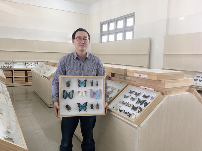 Gặp thầy giáo Hàn Quốc xây dựng bảo tàng Côn trùng tại Việt Nam ảnh 1