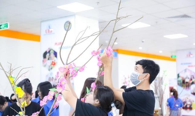 Sinh viên trổ tài trang trí mai, đào ngày Tết ảnh 5