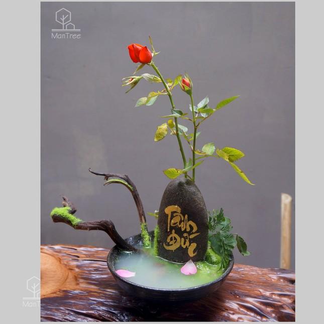 Bạn trẻ sáng tạo kinh doanh hoa kiểng Tết ảnh 4