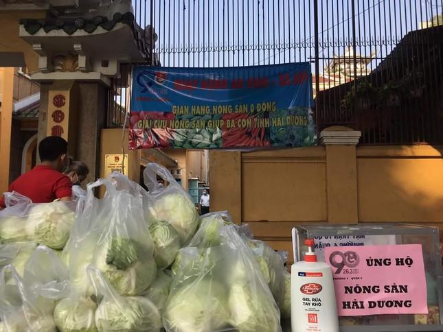 """Bạn trẻ TP. HCM """"giải cứu"""" nông sản cho nông dân Hải Dương ảnh 1"""