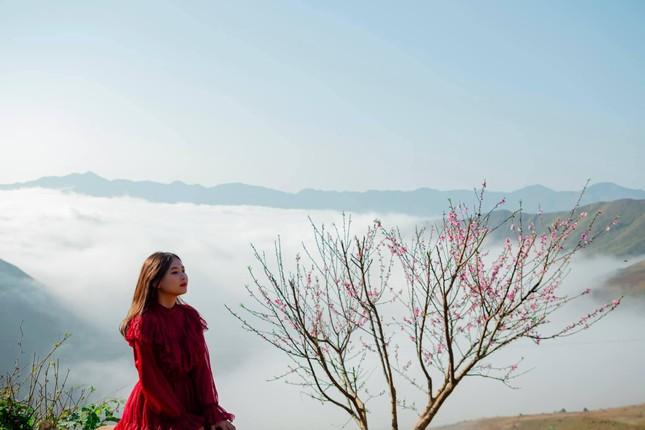 Lặng ngắm biển mây trên đỉnh Tà Xùa ảnh 5