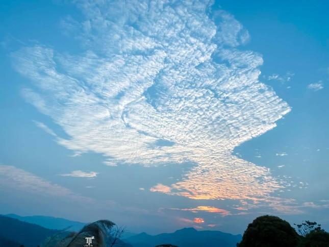 Lặng ngắm biển mây trên đỉnh Tà Xùa ảnh 15