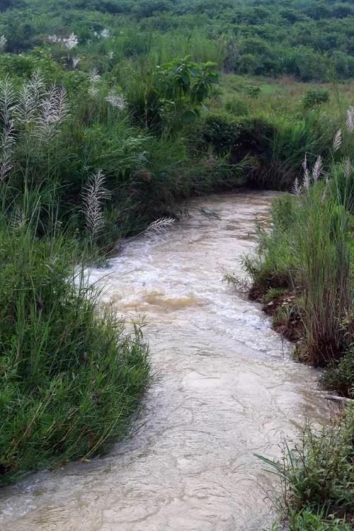 Mục kích máy xúc dọn dầu thải đầu nguồn nhà máy nước sông Đà ảnh 5