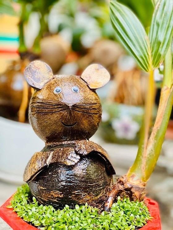 Dừa bonsai hình chuột đắt khách ảnh 2