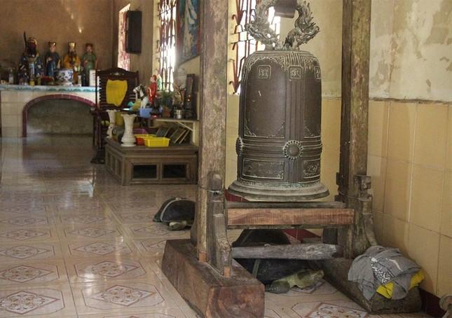 'Cụ rùa' sống dưới tượng phật Quan Âm trong chùa ở miền Tây ảnh 9
