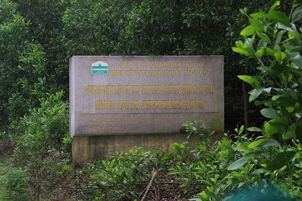 Cảnh hoang tàn bên trong dự án nuôi bò nghìn tỷ ở Hà Tĩnh ảnh 2