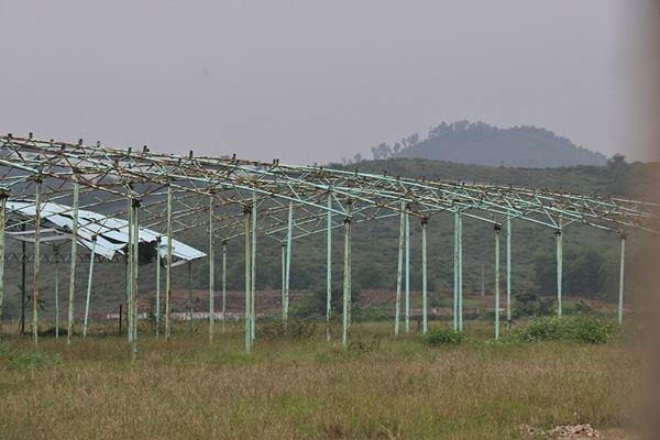 Cảnh hoang tàn bên trong dự án nuôi bò nghìn tỷ ở Hà Tĩnh ảnh 11