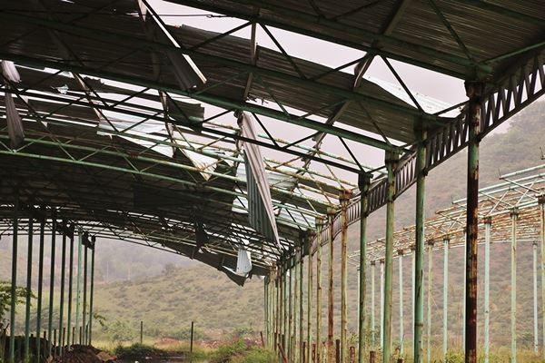 Cảnh hoang tàn bên trong dự án nuôi bò nghìn tỷ ở Hà Tĩnh ảnh 10
