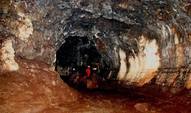 Việt Nam ghi nhận loài bọ cạp núi lửa đầu tiên của thế giới ảnh 1