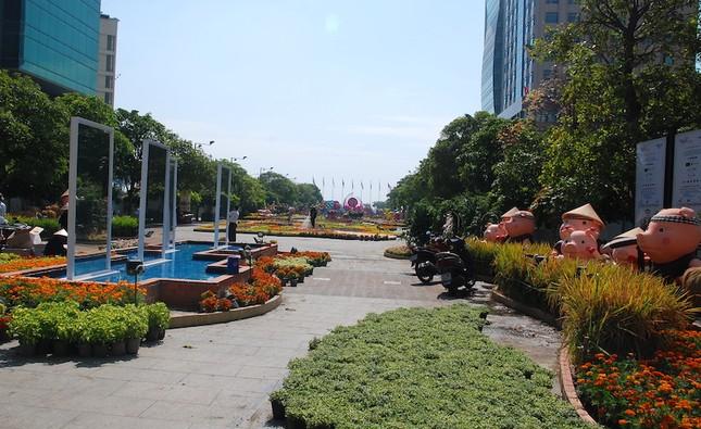 Ngắm đường hoa Nguyễn Huệ trước giờ khai mạc ảnh 8