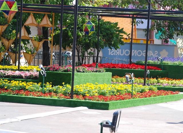 Ngắm đường hoa Nguyễn Huệ trước giờ khai mạc ảnh 11