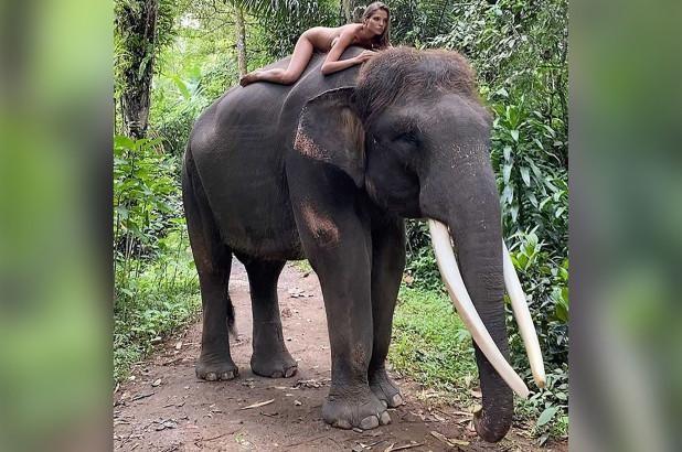 """Nữ mẫu Nga bị """"ném đá"""" vì chụp ảnh khỏa thân với loài voi khổng lồ có nguy cơ tuyệt chủng ảnh 1"""