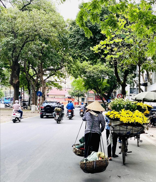 Phố phường Hà Nội lãng mạn với sắc trắng hoa Loa kèn ảnh 11