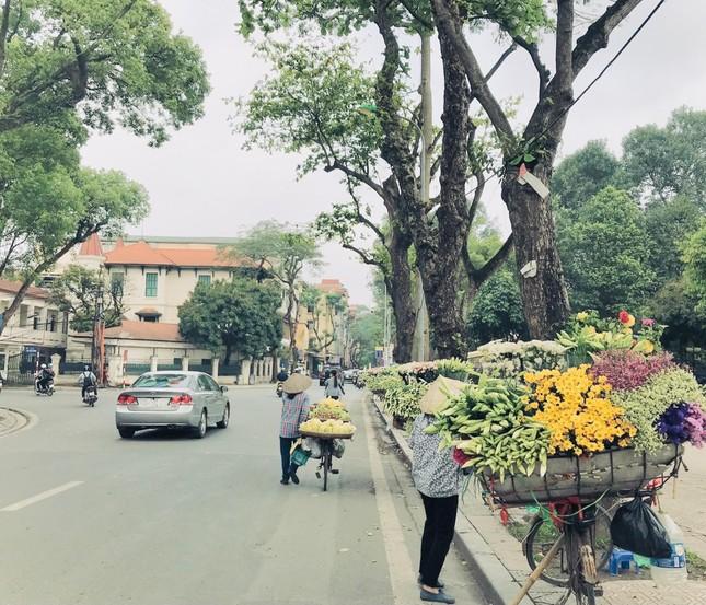 Phố phường Hà Nội lãng mạn với sắc trắng hoa Loa kèn ảnh 14