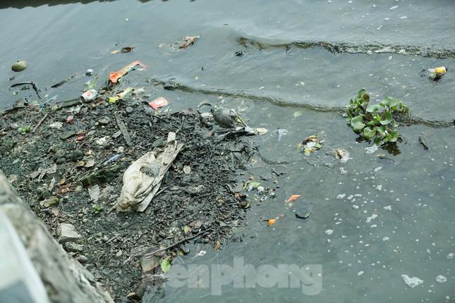 Nước hồ Tây ô nhiễm, nhiều thông số vượt ngưỡng cho phép ảnh 8