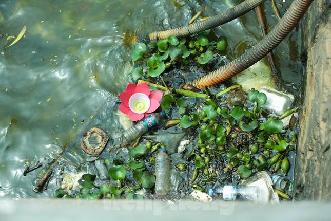 Nước hồ Tây ô nhiễm, nhiều thông số vượt ngưỡng cho phép ảnh 5