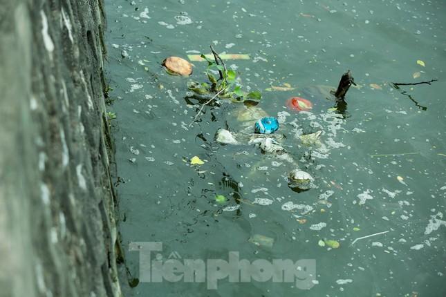 Nước hồ Tây ô nhiễm, nhiều thông số vượt ngưỡng cho phép ảnh 3