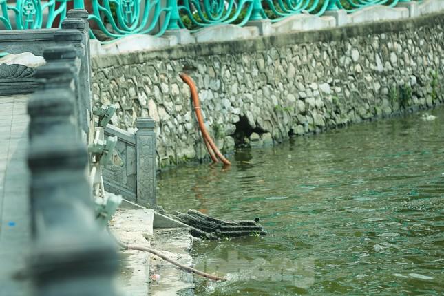 Nước hồ Tây ô nhiễm, nhiều thông số vượt ngưỡng cho phép ảnh 9