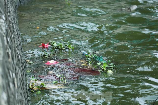 Nước hồ Tây ô nhiễm, nhiều thông số vượt ngưỡng cho phép ảnh 7