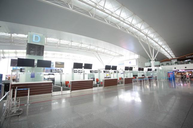 Máy bay đỗ đầy cảng, nhà ga Nội Bài 'vắng như chùa bà đanh' ảnh 16