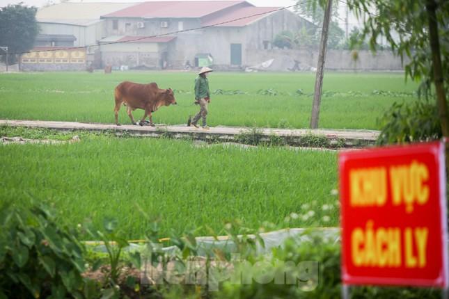 Lập 12 chốt kiểm soát, cách ly cả thôn Đông Cứu - Thường Tín vì có ca mắc COVID-19 ảnh 12
