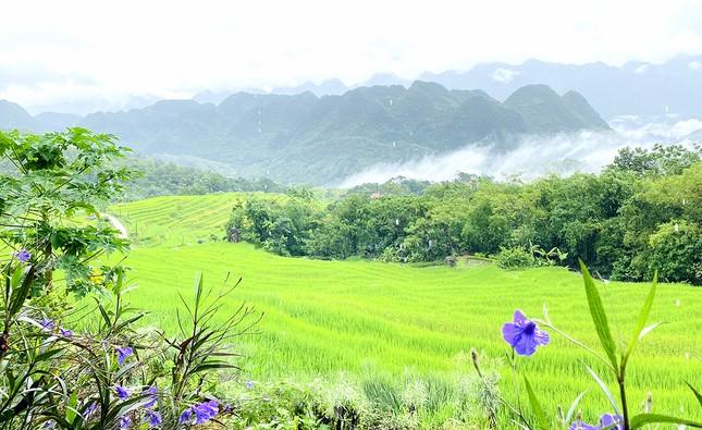 Đi săn mây ở Pù Luông, địa điểm sống ảo cho dân mê xê dịch ảnh 6