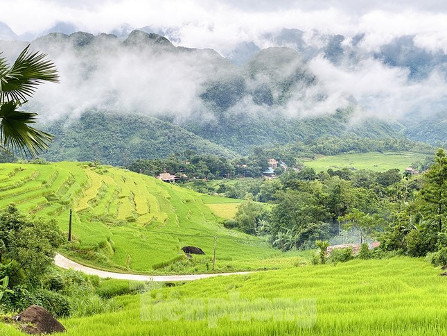 Đi săn mây ở Pù Luông, địa điểm sống ảo cho dân mê xê dịch ảnh 8