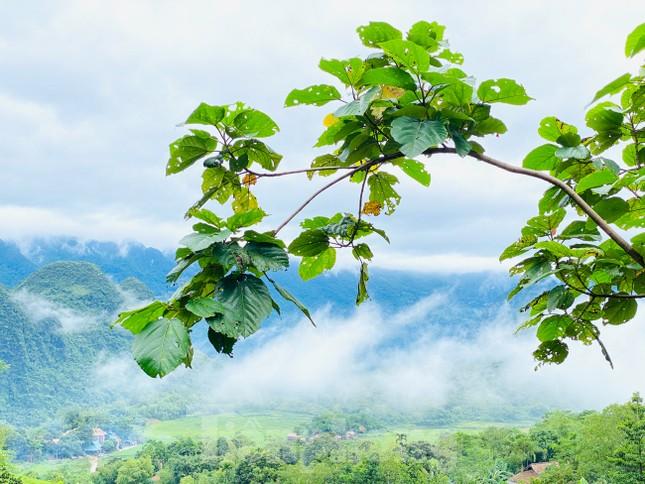Đi săn mây ở Pù Luông, địa điểm sống ảo cho dân mê xê dịch ảnh 2
