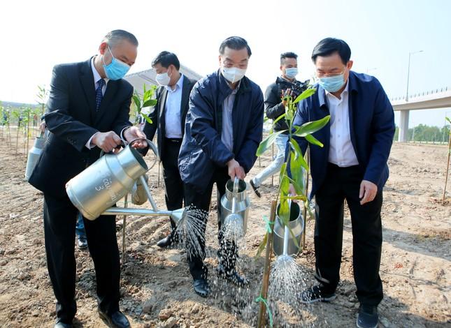 Hà Nội cùng Bộ TN&MT hưởng ứng chương trình trồng 1 tỷ cây xanh ảnh 4