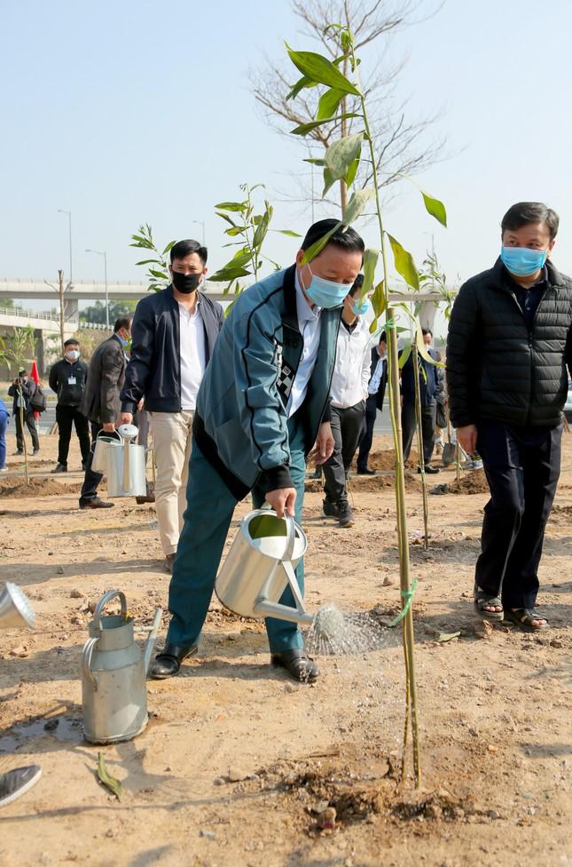 Hà Nội cùng Bộ TN&MT hưởng ứng chương trình trồng 1 tỷ cây xanh ảnh 5