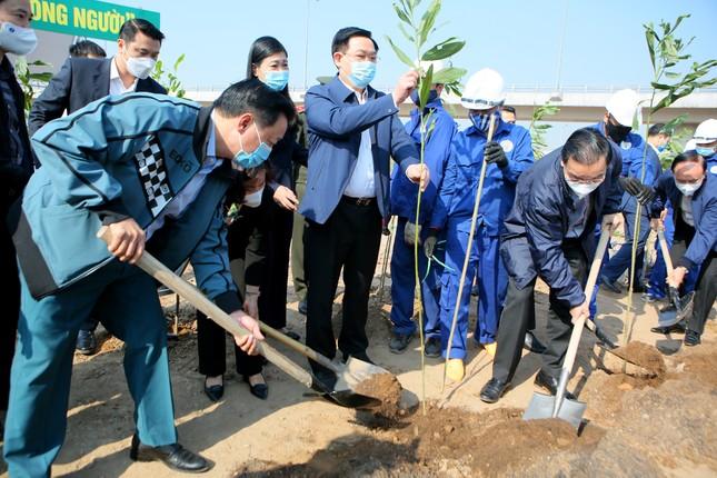 Hà Nội cùng Bộ TN&MT hưởng ứng chương trình trồng 1 tỷ cây xanh ảnh 1