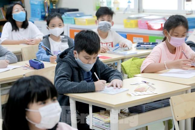 Sáng nay, hơn hai triệu học sinh Hà Nội trở lại trường ảnh 20