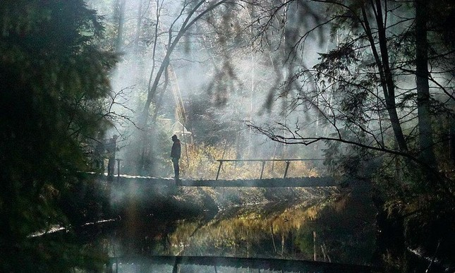 """""""Dạ quỷ rừng sâu"""", Tác phẩm kinh dị về quỷ dữ mở màn tháng Halloween không thể bỏ lỡ! ảnh 1"""