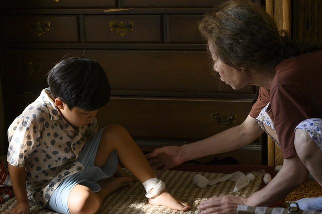 """Minari, phim Hàn này có gì đặc biệt mà được xem là người kế vị của """"Ký sinh trùng""""? ảnh 6"""