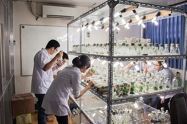 Gần 100 thí sinh được tuyển thẳng vào trường ĐH Khoa học Tự nhiên ảnh 1