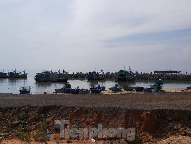 Bên trong siêu dự án 123ha ở Bình Thuận được giao đất 'thần tốc' ảnh 13